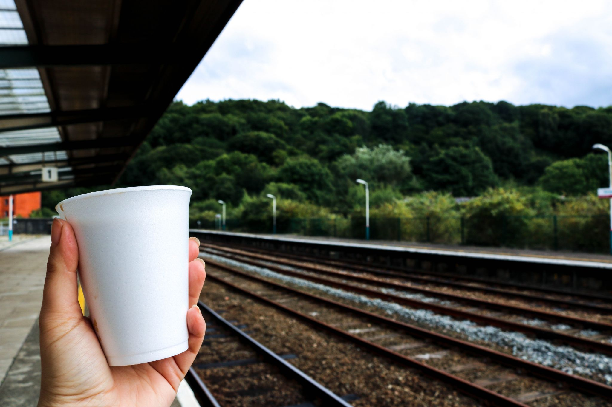 Wales by train: A stunning journey from South to North aboard 'The Gerald of Wales'
