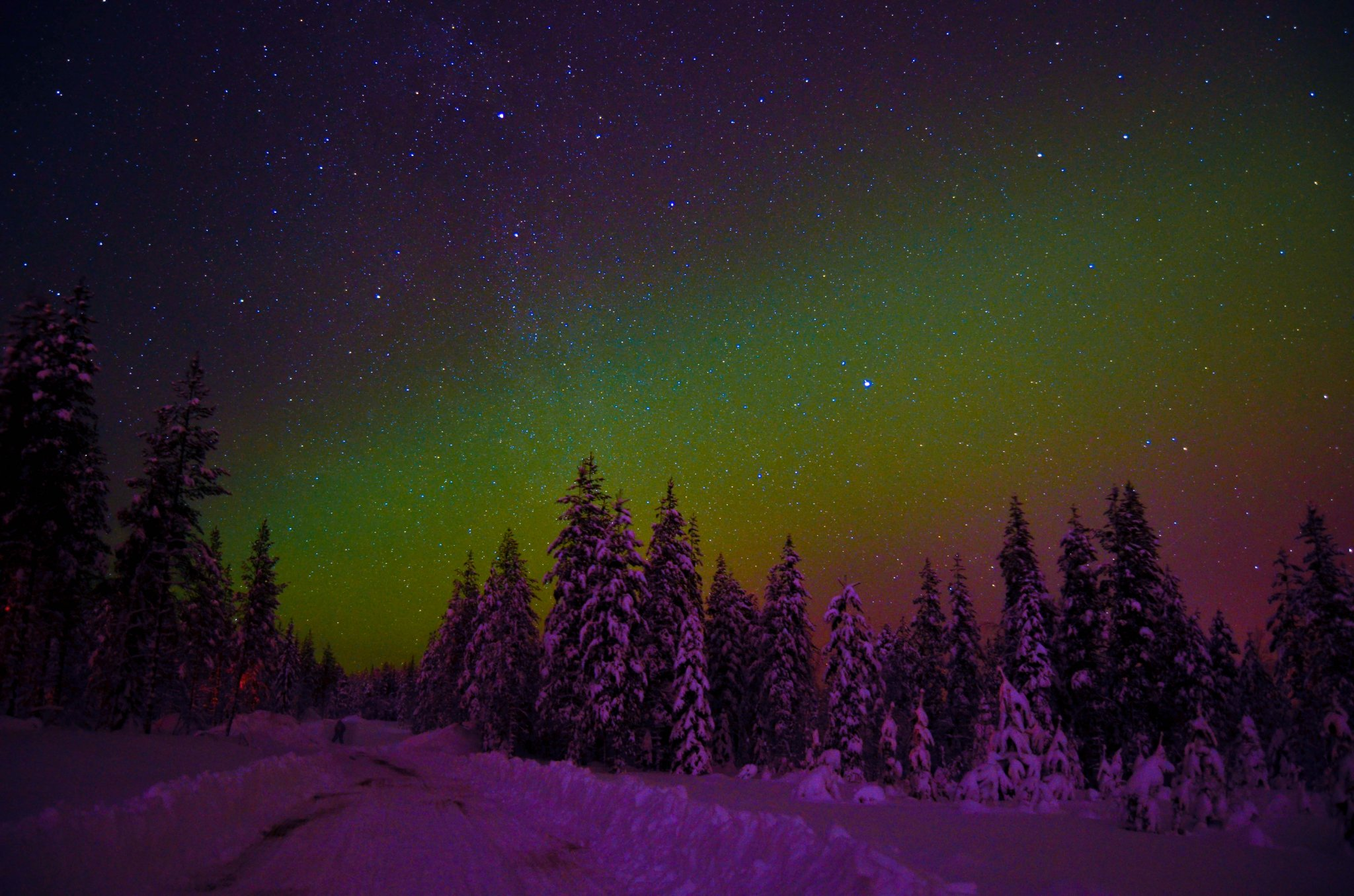 Ultimate guide to Lapland
